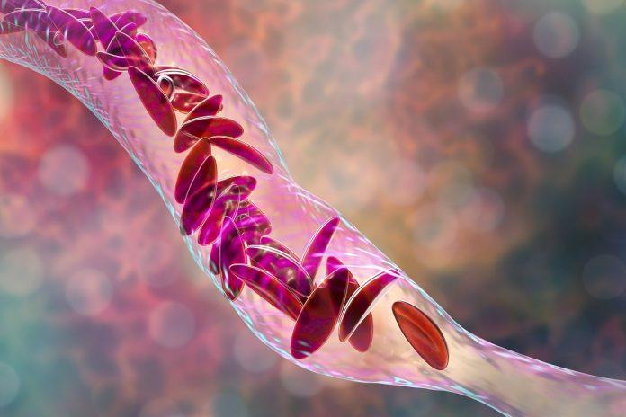 Angiotensine : vasoconstriction