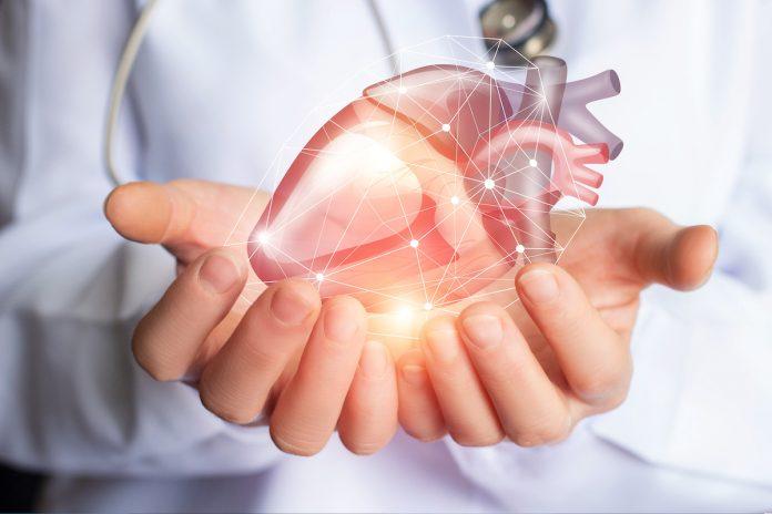 Cœur artificiel : Carmat bientôt commercialisé