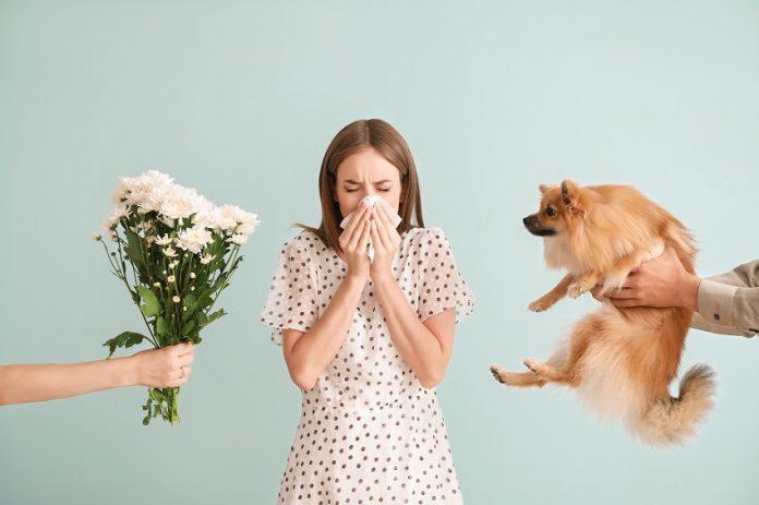Les allergies : fleurs animaux