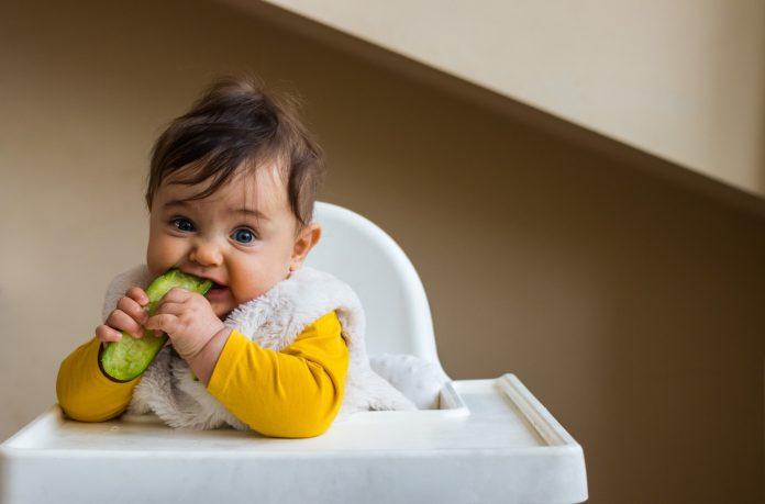 Nutrition : qu'est-ce que la diversification alimentaire menée par l'enfant ?
