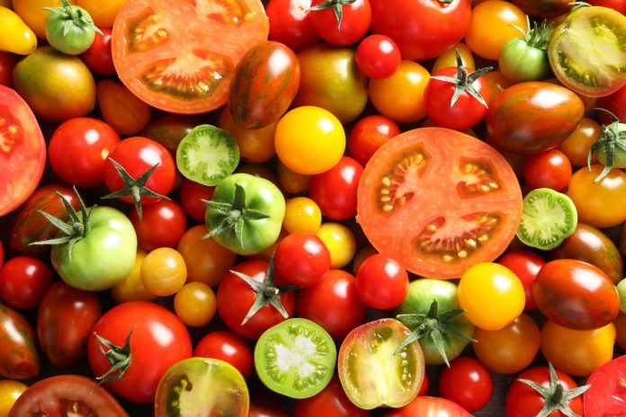 La tomate : un super légume-fruit ?