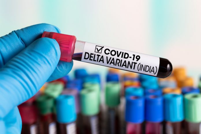Covid-19 : suspicion de variant delta (indien) dans les Landes