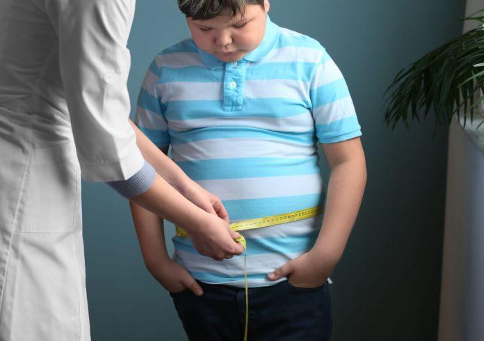 Obésité : près d'un adulte sur six est concerné