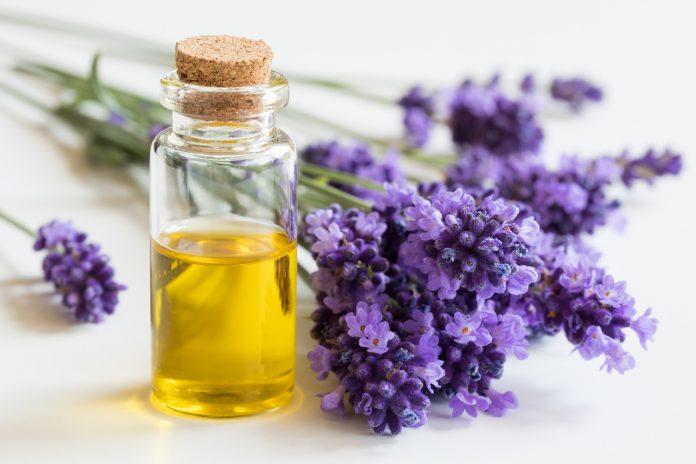 Les vertus de l'huile essentielle de lavande